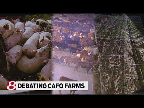 Debating confined animal feeding operations