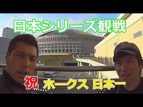 ヤフオクドーム行ってきました。2014日本シリーズ観戦 福岡ソフトバンクホークス 対 阪神タイガース