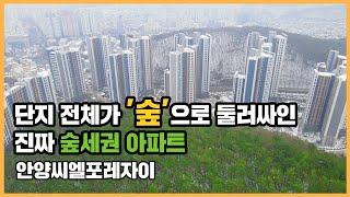 최초공개 '찐' 숲세권 아파트! 안양의 …