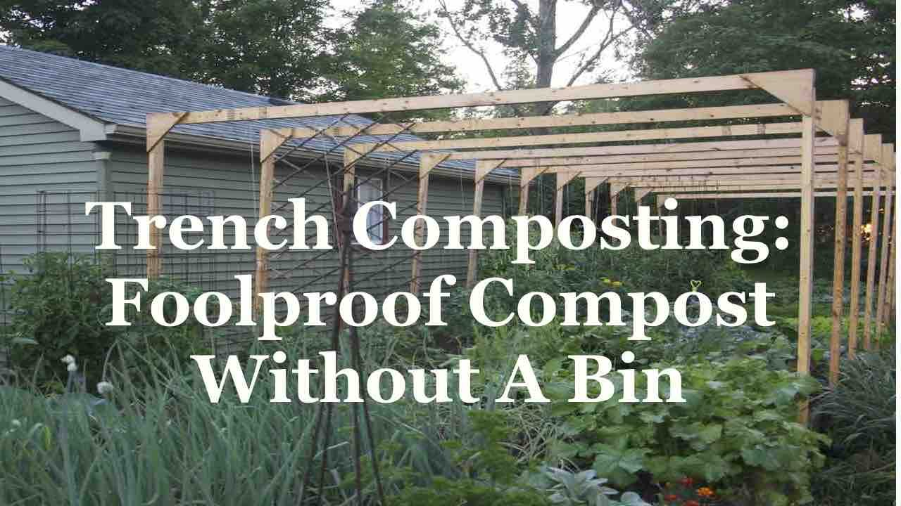 trench composting foolproof compost without a bin youtube