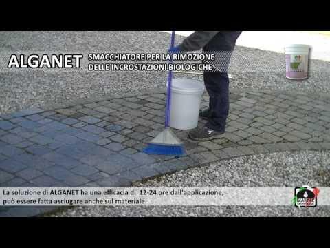 Come pulire i pavimenti e rivestimenti esterni da alghe, muffe, licheni e muschio. from YouTube · Duration:  2 minutes 44 seconds