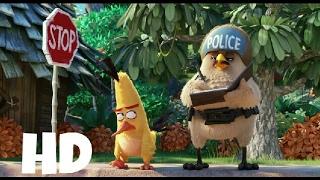 Чак и полицейский .     Angry Birds 2016. HD