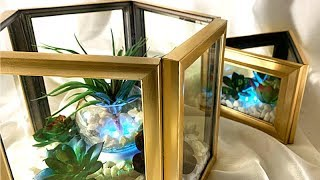 DIY Dollar Tree - Lit Terrariums