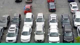 Affordable Used Cars for Sale in Davie, FL | Auto Auction Advisors