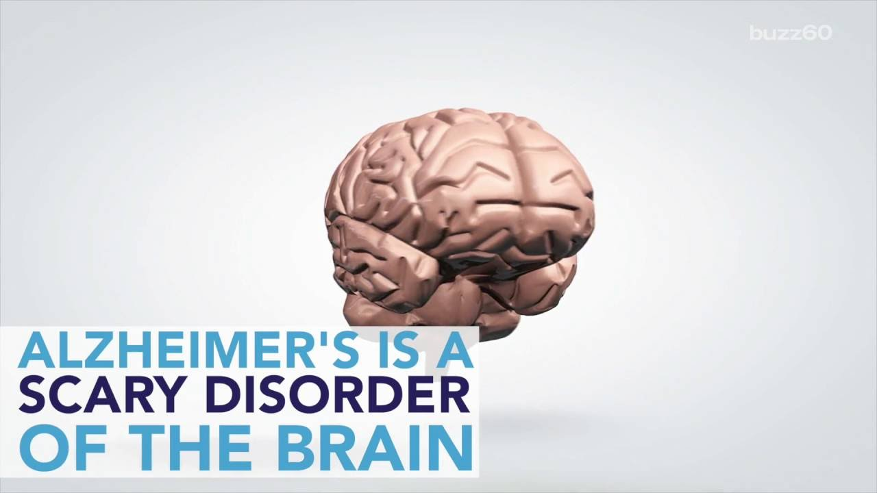 Jobs That Can Help Ward Off Alzheimers Youtube