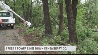 Trees and power lines down in Newberry county