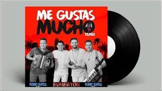 Jorge Celedon Ft. Alkilados Me Gustas Mucho Remix.mp3