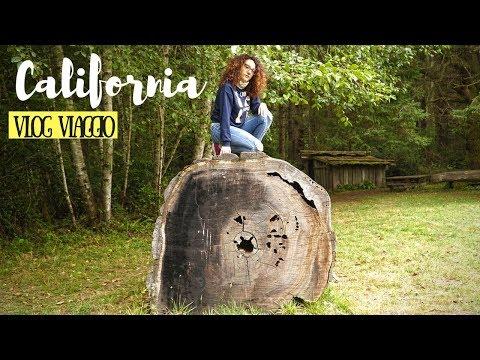 CALIFORNIA DEL NORD: On the Road verso il Parco delle Sequoia \\ VLOG VIAGGIO CALIFORNIA