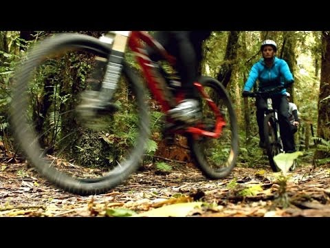A local's guide to cycle trails in Waikato, NZ