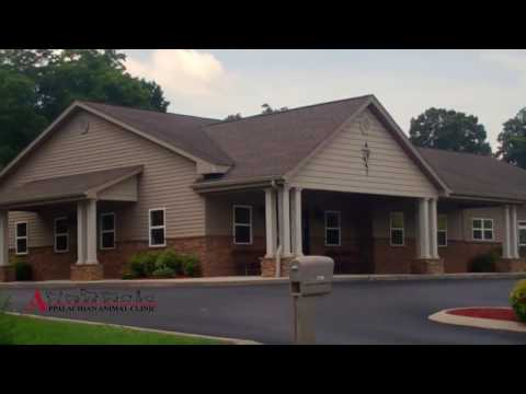 Welcome To Appalachian Animal Clinic  - Cleveland, TN
