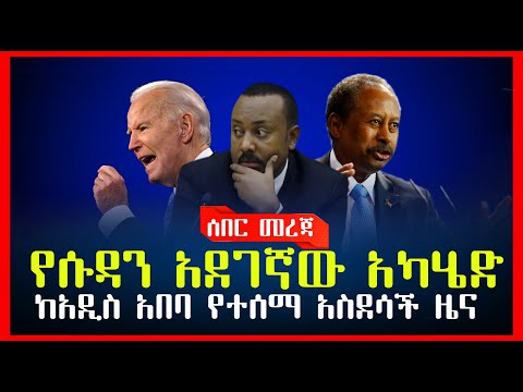 Ethiopian News: ሰበር ዜና  ከአዲስ አበባ የተሰማ አስደሳች ዜና // የሱዳን አደገኛው አካሄድ// መፈናቀሉ አሁንም አልቆመም ኢሰመኮ