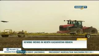 Some 31% of land in the North-Kazakhstan region is cultivated - Kazakh TV