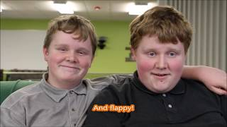 Happy Flappy Brothers (A Brother with Autism)