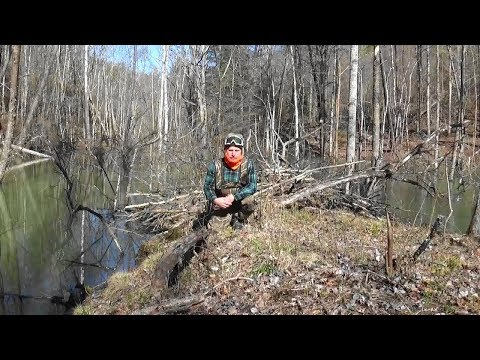 trapping-in-eastern-kentucky-2018-19!-episode-8!