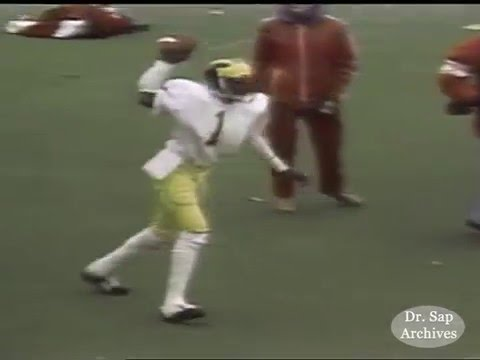 1980 Wisconsin Michigan Anthony Carter TD