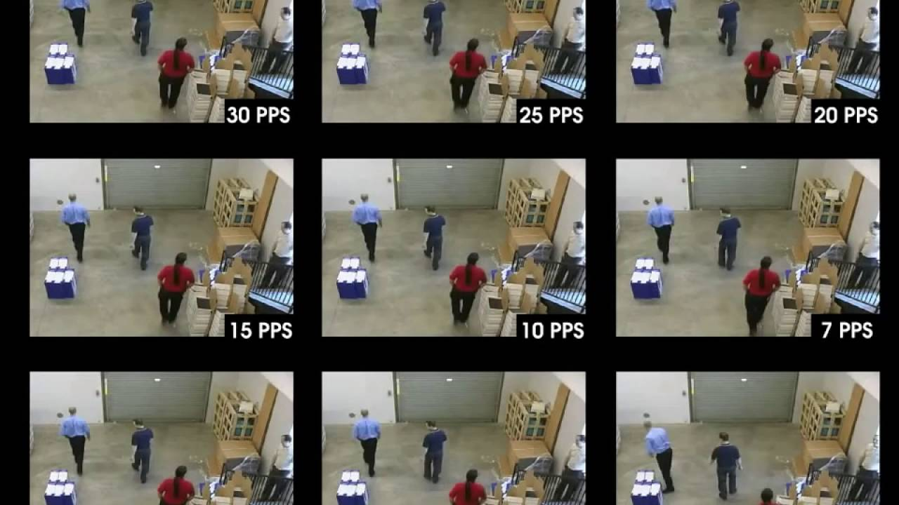 IP Video Frame Rate CCTV Security YouTube - Syncing a videos frame rate with a birds wings does something amazing