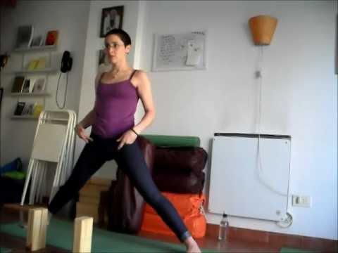 11 prasarita padottanasana translation  yoga poses