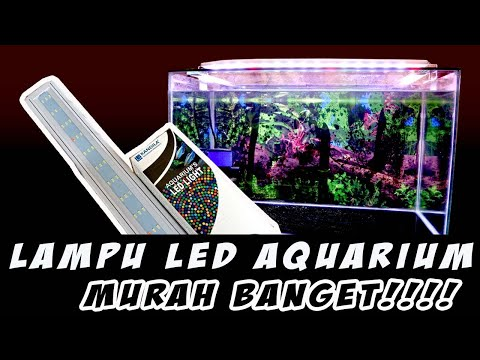 pilih-yang-begini!!!-udah-murah-aquarium-cantik-pula