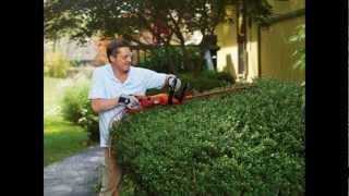 Hedge Trimmer Black & Decker HH2455 24 Inch HedgeHog