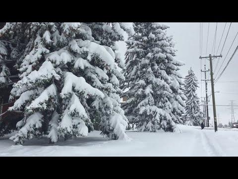 FOOT OF HEAVY SNOW Falls in Calgary, Alberta October, 2, 2018