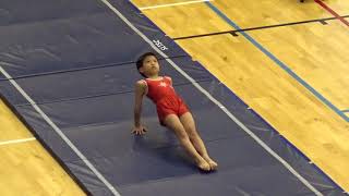 Publication Date: 2018-05-12 | Video Title: 2018 年全港小學体操比賽---自由体操(崔樂童)