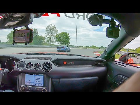 Shelby GT350R Mustang Go HEAD To HEAD Fastest I have been so far