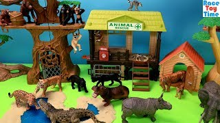 Wildlife Jungle Animals Adventure - Fun Animal Toys For Kids Video