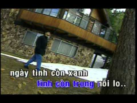 Lời Tình Buồn_ Hoàng Thanh Tâm (Karaoke)