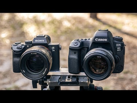 Sony A7III vs Canon 6D Mark II