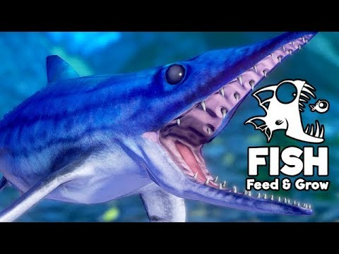 Feed and Grow Fish Gameplay German - Der Ichthyosaurus ist so niedlich