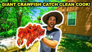 Trapping CRAWFISH at the ABANDONED RANCH!!! (Catch Clean Cook)