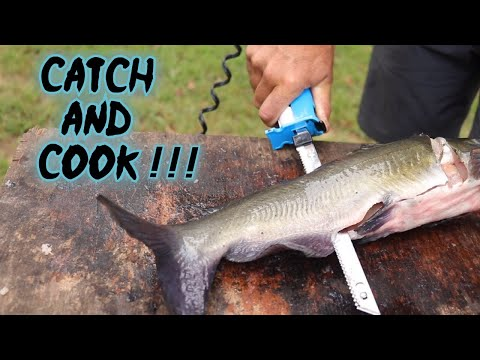 CATCH And COOK Channel Catfish!!! DELICIOUS Grilled Fillets!