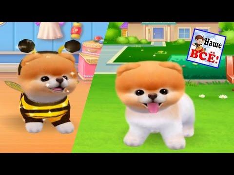Игры Собаки - Бесплатные онлайн игры для девочек на