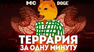 ВСЯ ТЕРРАРИЯ ЗА МИНУТУ // MC DOGE