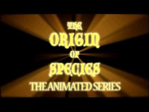 ORIGIN OF SPECIES ANIM