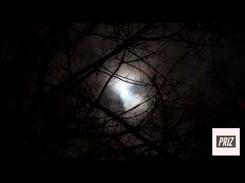 Priz - Full Moon