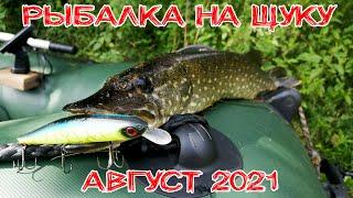 Ловля щуки на спиннинг в августе 2021 Рыбалка на щуку Ловля щуки на воблеры