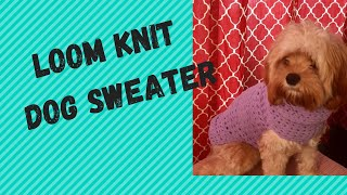 How to Loom Knit A Dog Sweater