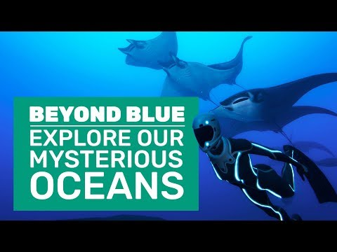 Beyond Blue Gameplay | First Look At Blue Planet: The Game