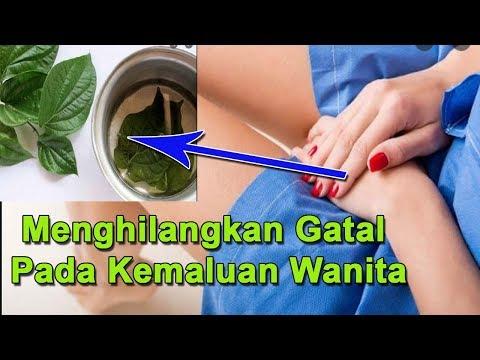 WWW.TRANSTV.CO.ID Dr. Oz Indonesia memiliki sebuah konsep talkshow yang fokus pada topik mengenai dunia kesehatan....