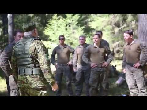 DFN:Exercise Hedgehog: Estonian Defense Forces Commander Visit, ANTSLA, ESTONIA, 05.09.2018