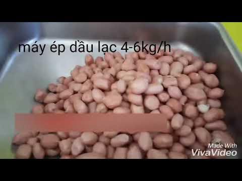 Máy ép dầu lạc 6kg/h YF-J503-1 liên hệ 0986.767.391 - YouTube