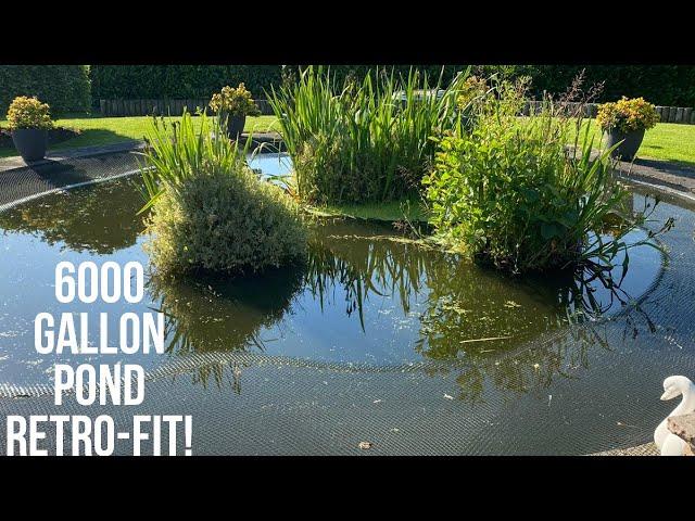6000 GALLON POND - OVERHAULLED!