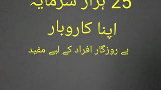 Pakistani street food  25 thousand investment   How to made Biryani  learn and earn tips