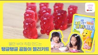 브레드가든 곰돌이 젤리 키트 만들기 Gumi Bear …
