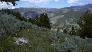 Big Horn Mountains Descend to Johnny Creek aboard WR250X
