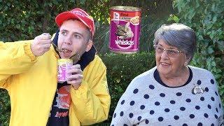 Eating Cat Food In Public