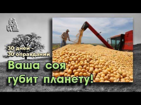 Выращивание сои вредит окружающей среде (Оправдание 25)