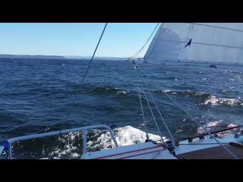 Sailing offshore on Sailscovare