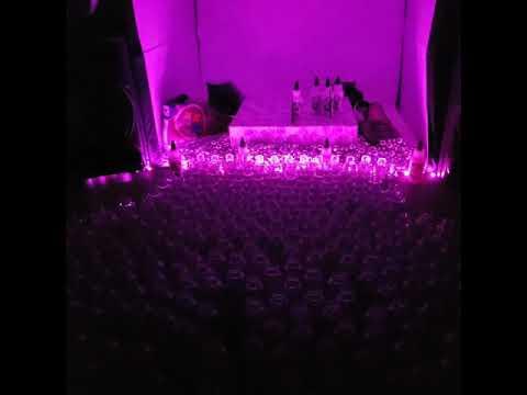 Bottling day at LK Top Coats